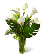 Always Adored Calla Lily Arrangement
